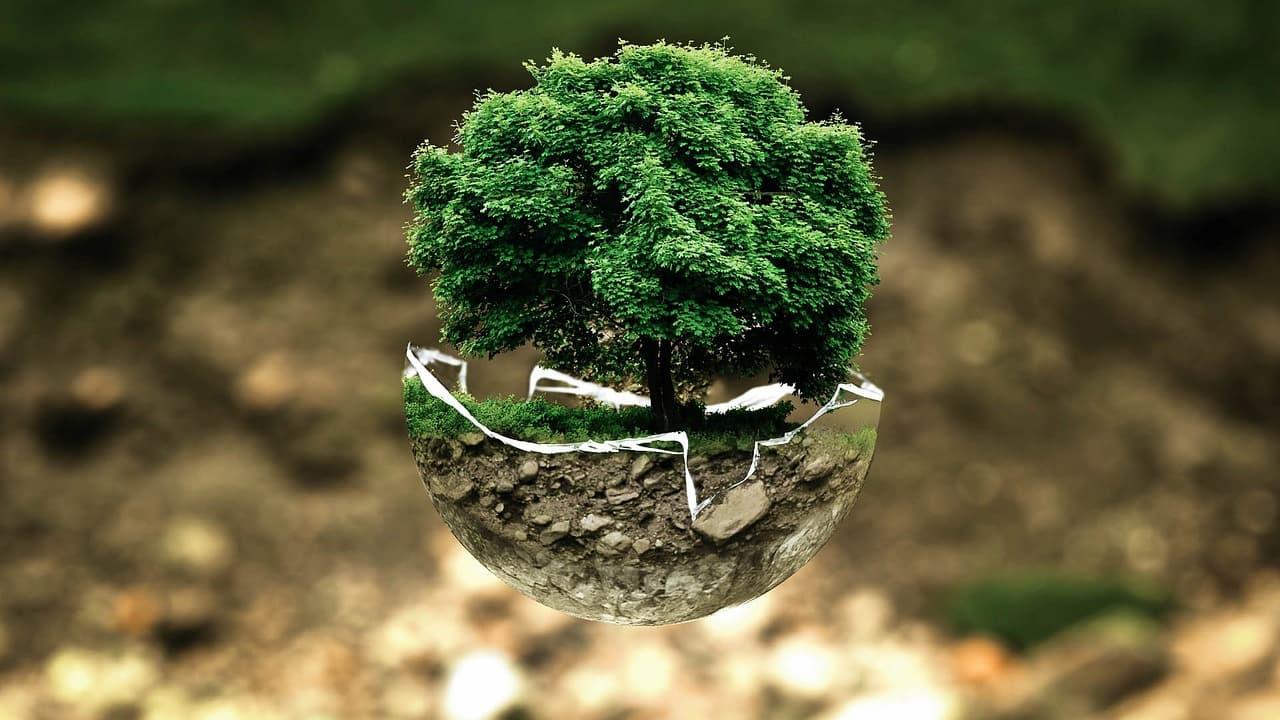 Agroveyca, comprometida con el medio ambiente